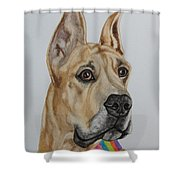 Memphis The Great Dane Shower Curtain