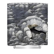 Mendenhall Lake Ice Abstract Shower Curtain