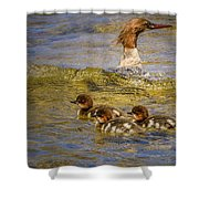 Merganser Lake Tahoe Shower Curtain