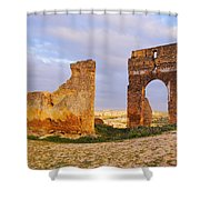 Merinid Tombs Ruins In Fes In Morocco Shower Curtain