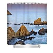 Mermail Reef Shower Curtain