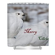 Merry Christmas - Winter Ptarmigan Shower Curtain