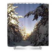 I Wish You A Merry Christmas From My Winter Wonderland  Shower Curtain