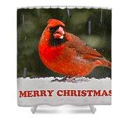 Merry Christmas Cardinal Shower Curtain