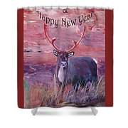Merry Xmas And Happy New Year Shower Curtain