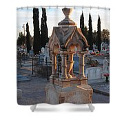 Mesilla Nm Cemetery 26 Shower Curtain