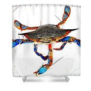 Mess With Me............sold. Shower Curtain