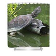 Metal Turtle Shower Curtain