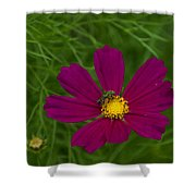 Metallic Green Bee On Cosmos Shower Curtain