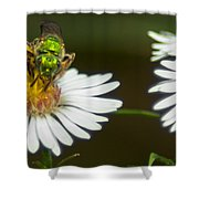 Metallic Green Wasp Shower Curtain