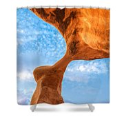 Metate Shower Curtain