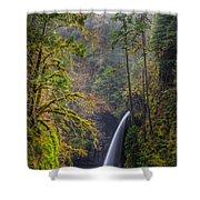 Metlako Falls Oregon Shower Curtain