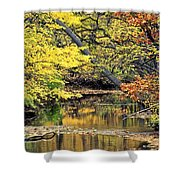 Metropark Picnic Shower Curtain