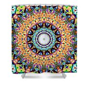 Mexican Ceramic Kaleidoscope Shower Curtain