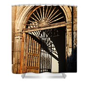 Mexican Door 27 Shower Curtain