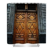 Mexican Door 68 Shower Curtain