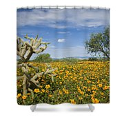 Mexican Golden Poppy Flowers And Cactus Shower Curtain