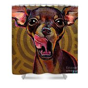 Mexican Mystique Shower Curtain