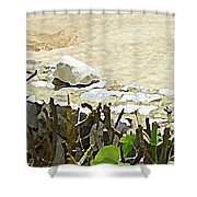 Mexican Stand Off Shower Curtain