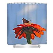 Mexican Sunflower Hat Dance Shower Curtain