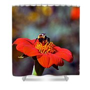 Mexican Sunflower Open House Party Time Shower Curtain