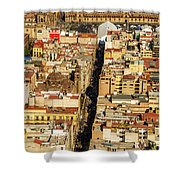 Mexico City Cathedral And Zocalo Shower Curtain by Jess Kraft