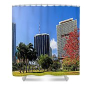 Miami Cityscape   Shower Curtain