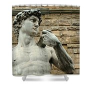 Michelangelo's David 1 Shower Curtain