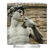 Michelangelo's David 1 Shower Curtain