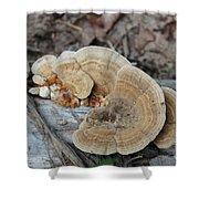Michigan Fungus 2 Shower Curtain