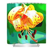 Michigan Lily Shower Curtain