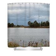 Michigan Wetland Shower Curtain