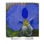 Mickey Mouse Flower Shower Curtain