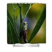 Micro Environment  Shower Curtain
