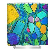 Art And Geology Shower Curtain