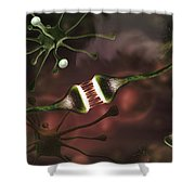Microscopic Image Of Brain Neurons Shower Curtain