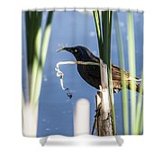 Midday Snack Shower Curtain