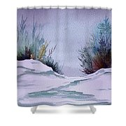Midday Winter In Maine Shower Curtain