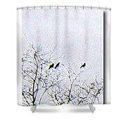 Middle March Shower Curtain