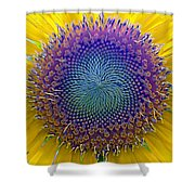 Middle Of Sunflower Close-up Shower Curtain