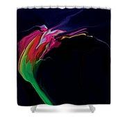 Midnight Bloom Shower Curtain