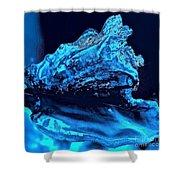 Midnight Blue Sea Shell Shower Curtain