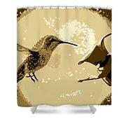 Midnight Hummingbird Shower Curtain