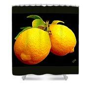 Midnight Lemons Shower Curtain