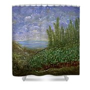 Midnight Lullaby Shower Curtain