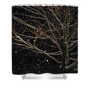 Midnight Snow Shower Curtain