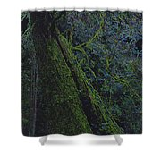 Midnight Tree By Jrr Shower Curtain