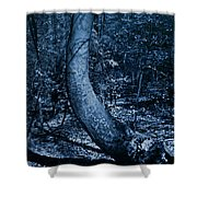 Midnight Woods Shower Curtain