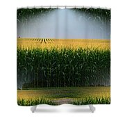 Midwest Gold Shower Curtain