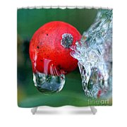 Midwinter Meltdown Shower Curtain